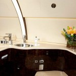Challenger 850 interno bagno